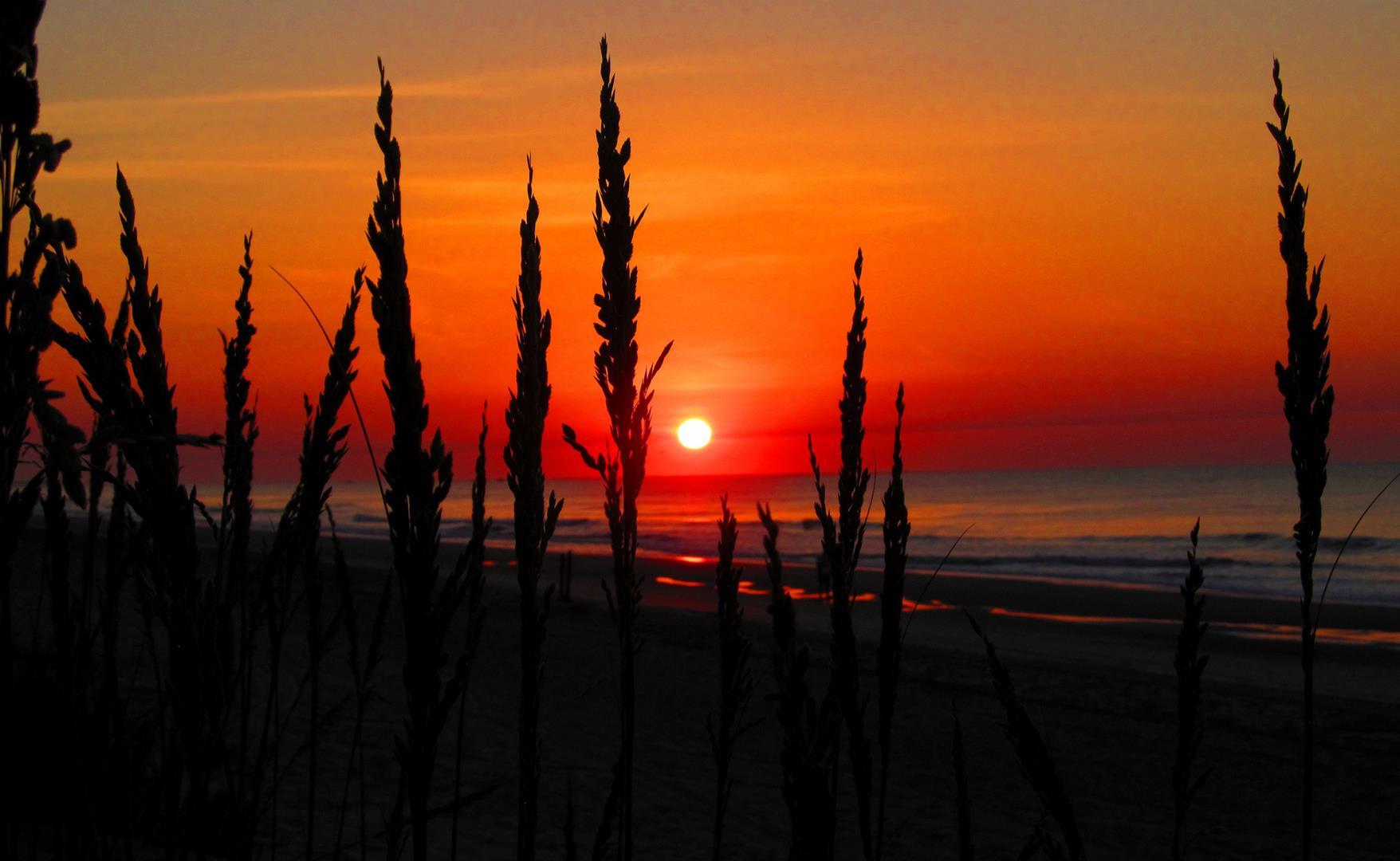 Refreshing Reunion Locations in South Carolina